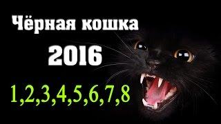Чёрная кошка 1,2,3,4,5,6,7,8 серия - Русские новинки фильмов 2016 #анонс Наше кино