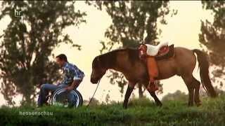 Pferdeflüsterer bricht alle Online-Rekorde