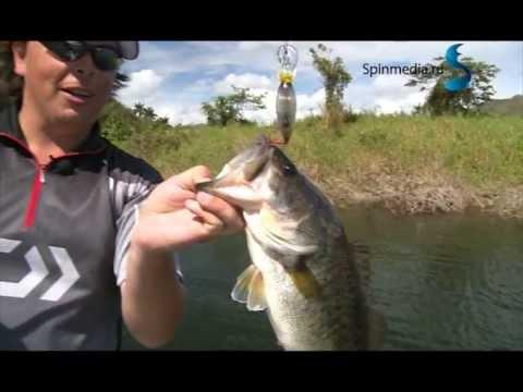 рыбалка в варадеро с берега