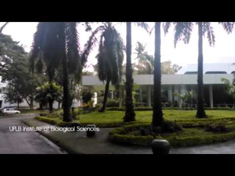 TILAMSIK - The UPLB Chemical Waste Management Story