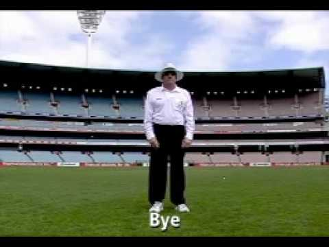 Cricket Umpire Signals - YouTube