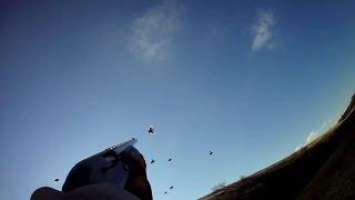 Охота на вальдшнепа(Охота на вальдшнепа в Ростовской области., 2015-11-03T16:12:40.000Z)