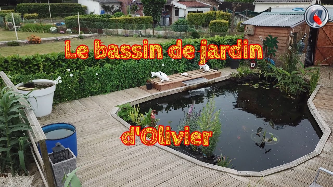 le bassin de jardin d'olivier - youtube