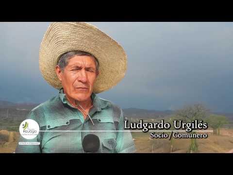 Emprendimiento de azuayos en Santa Elena