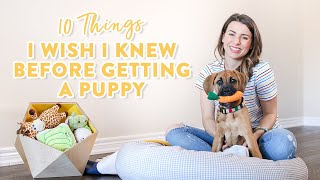10 Things I Wish I Knew Before Getting a Puppy