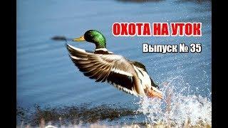 Охота на уток, выпуск №35 (UKR)