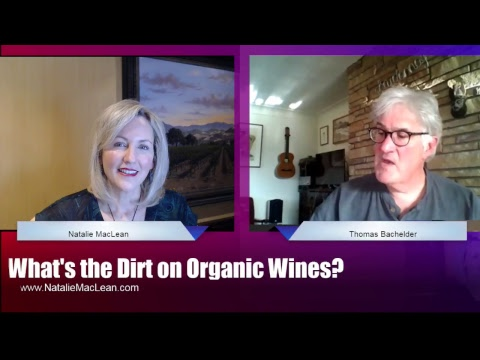 What's the Dirt on Organic Wines?