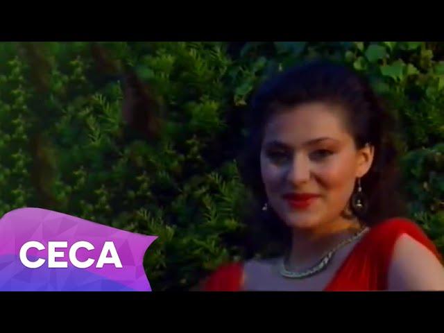 ceca-mokra-trava-official-video-1991-svetlana-ceca-raznatovic