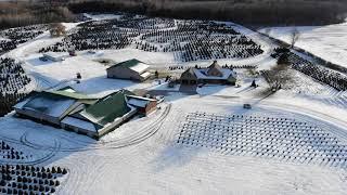Welcome to Aissen's Tree Farm - Santa's View