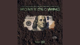 Money Growing (Remix) (feat. Riff Raff, Rich the Kid & Ponce De'leioun)