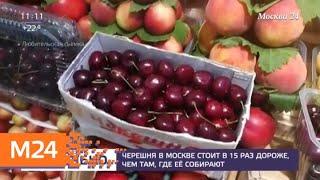 Где купить черешню по адекватной цене   Москва 24