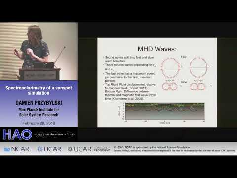 Damien Przybylski   Max Planck Institute for Solar System Research   Spectropolarimetry of a sunspot