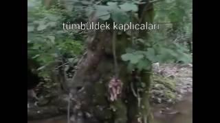 Bursa mustafakemalpaşa tümbüldek kaplıcaları