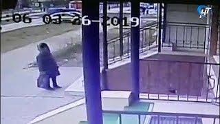 У неопознанной пожилой женщины, скончавшейся в магазине, может быть заперта дома собака