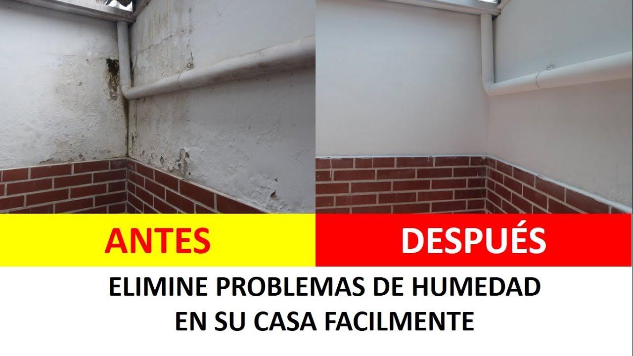 Como quitar la humedad de las paredes h galo f cil youtube - Quitar humedad pared ...