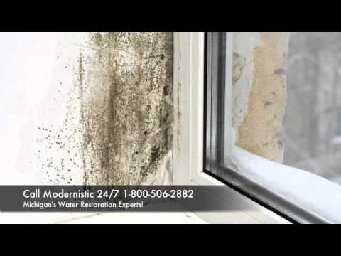 Should I worry about mold after a flood? | Modernistic Mold Remediation