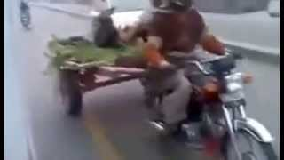 Funny Video in Pakistan