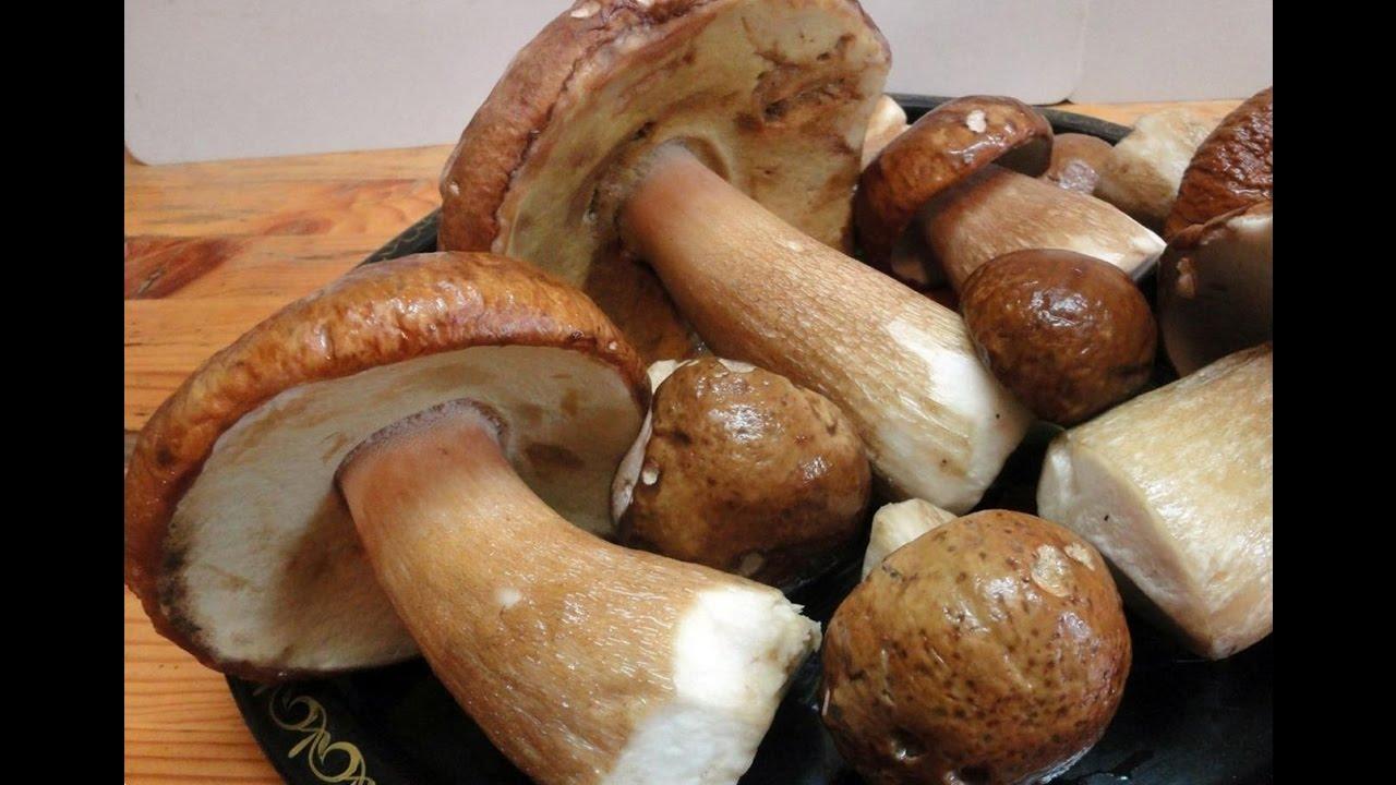 Кабачки с говяжьим фаршем в духовке рецепт с фото пошаговый
