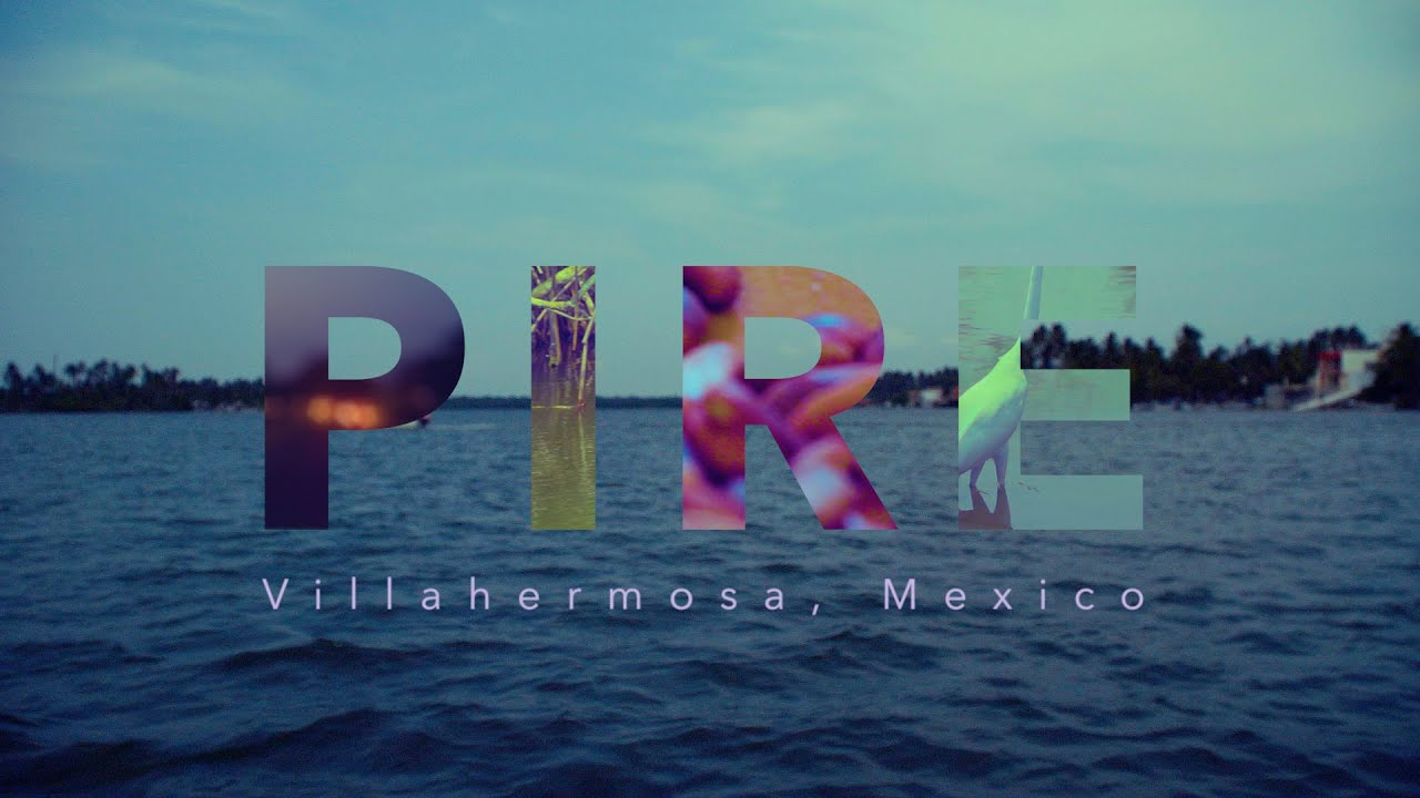 Preview image for PIRE: Bioenergy Across the Americas video