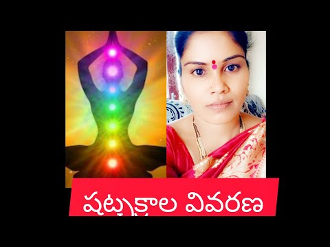 spiritual world మానవ శరీరంలో ఏడు చక్రాల వివరణ 7n chakras in humanbody - YouTube