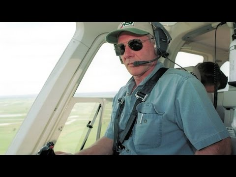 Video shows Harrison Ford's plane mishap