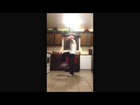 Trap Music part 1 - Willdabeast Choreography Cover @Willdabeast__