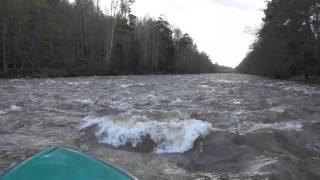 Там где живет медведь / Девственная тайга / Сплав по таежной реке(Там где живет медведь / Девственная тайга / Сплав по таежной реке . Страшно, но уже плывешь и..... Рафтинг доста..., 2014-05-23T04:40:13.000Z)