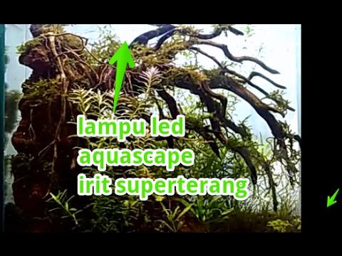 Lampu Untuk Aquarium Superterang Hemat Listrik Karya Sendiri Youtube