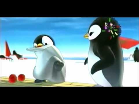Pinguino Damerino
