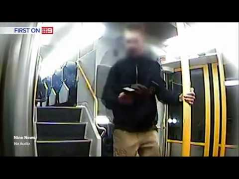 Teenager caught on camera vandalising Sydney train doors
