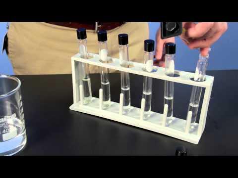 Carolina Investigations® for AP Biology: Origin of Life