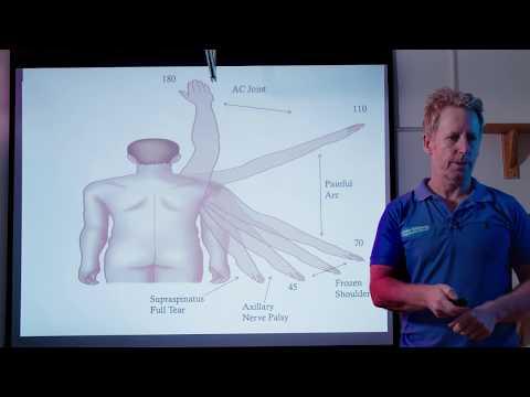 differential-diagnosis-of-shoulder,-cervical-&-nerve-pain-via-brachial-plexus