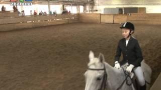 Кубок города по конному спорту
