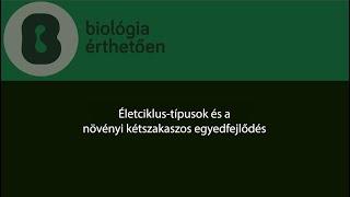 Antibiotikumok a prosztatitisből