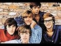 Hermans Hermits - Ginny Go Softly