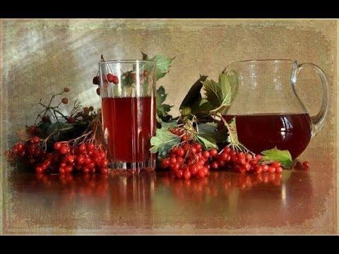 Вино из калины в домашних условиях простой рецепт на водке