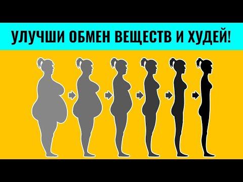 Как ускорить обмен веществ для похудения. Что такое метаболизм?