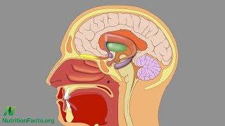 Test na Alzheimerovu nemoc pomocí přičichnutí k arašídovému máslu