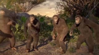 Мы отвисаем как обезьяны в джунглях 5 минут