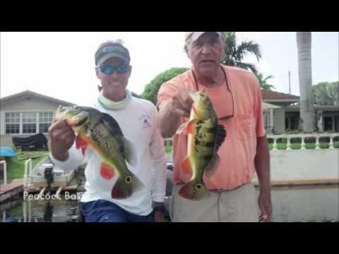 Capt Gus' 2013 Florida Keys Fishing Vacation