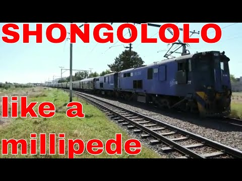 SHONGOLOLO EXPRESS: 2018-02-15 11h15 Good Hope/Golf – Southbound trip 15th day