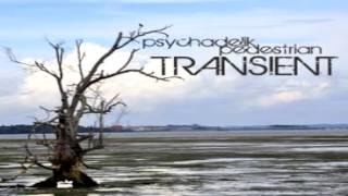 Mix Session Psychadelik Pedestrian Transient Trip-Hop Dance Chillout Breakbeat