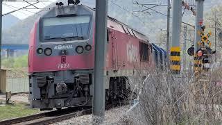 경부선 대자건널목을 지나가는 #3421 화물열차