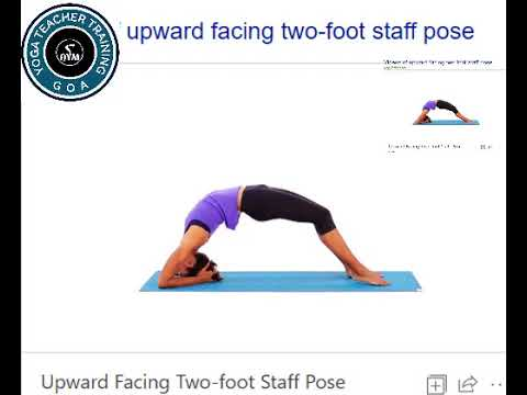 upward facing twofoot staff pose dwi pada viparita