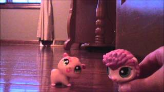 LPS Spongebob SquarePants   Good neighbours