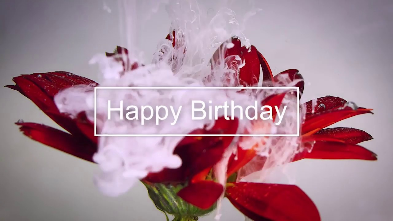 Happy Birthday Video Song Download Free Hd Mp4 Youtube