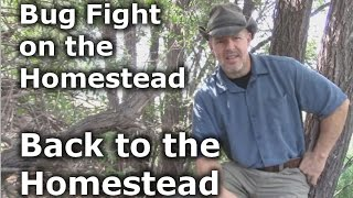 Back to the Homestead - Bug Attack on the Homestead