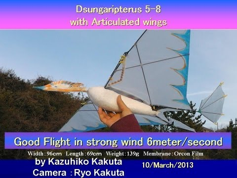 Dsungaripterus 5-8 with Articulated Wings: Very Good Flight in Strong wind 6meter / second