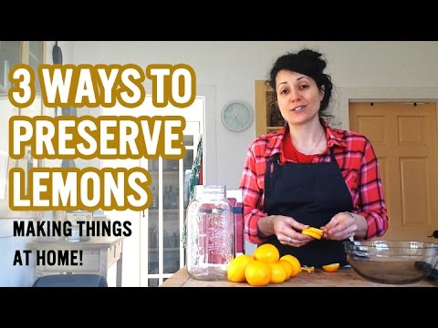 3 Ways To Preserve Lemons || Hanging out at Home!