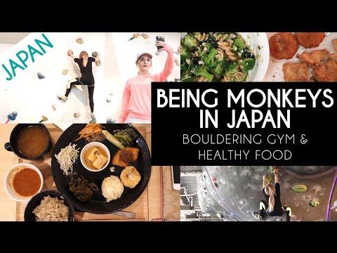 BEING MONKEYS   ROCK CLIMBING IN JAPAN